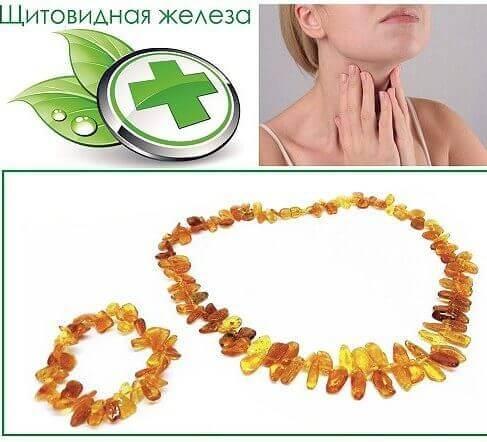 Щитовидная железа - Янтарная лавка