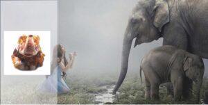 Слоник с янтарем