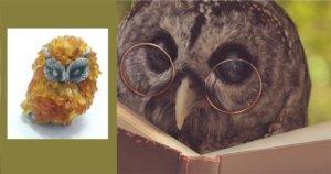 мудрая сова с янтарем