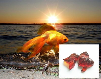 золотая рыбка из янтаря
